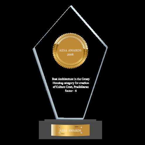 AESA Award - 2008