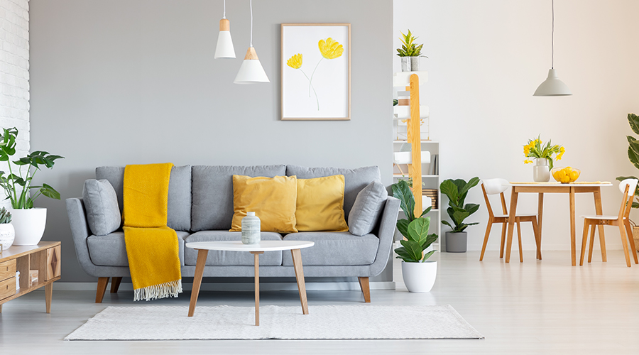 The Perfect Home Décor for a Brand New Year